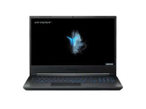MEDION P15805, Gaming Notebook mit 15.6 Zoll Display, Core™ i7-9750H Prozessor, 8 GB RAM, 512 GB HDD, 512 GB SSD, GeForce GTX 1660Ti, Schwarz