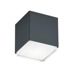 Helestra LED-Außendeckenleuchte Isy