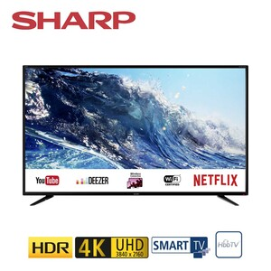 49BJ2E • 3 x HDMI, 3 x USB, SD-Kartenslot, CI+ • integr. Kabel-, Sat- und DVB-T2-Receiver • Maße: H 63,7 x B 110,3 x T 8,3 cm • Energie-Effizienz A (Spektrum A++ bis E)  *Logo: Netflix_2017