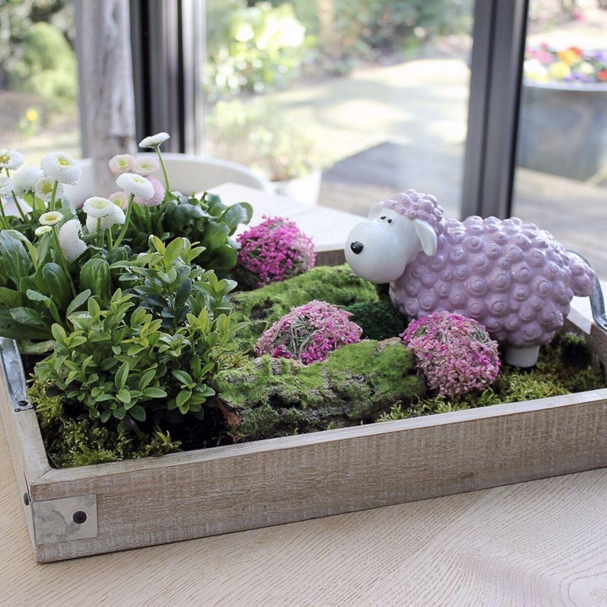 Bild 5 von Gartenfigur Mini-Schaf Pastellflieder