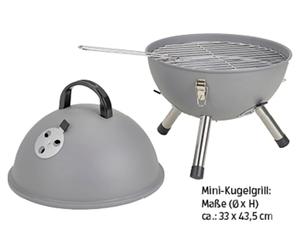 BBQ Mini-Grill