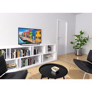 MEDION LIFE® E13291 TV, 80 cm (31,5''), HD, HD Triple Tuner, integrierter Mediaplayer, CI+