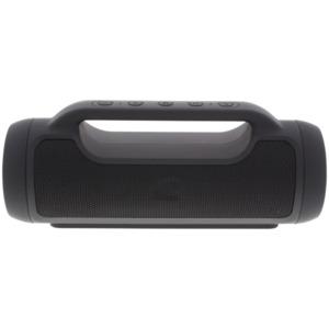 Audiologic tragbarer Lautsprecher