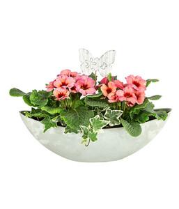 Bepflanzte Kunststoff-Jardiniere