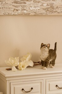 My Flair Katze, grau/weiß gestreift