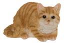 Bild 2 von My Flair Katze, orange/weiß gestreift