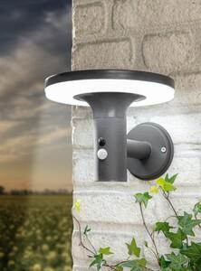 I-Glow SMD LED Solar Premium-Wandleuchte mit XL-Solarpanel