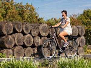 FISCHER E-Bike City »Cita 3.0«, 28 Zoll, 100 km Reichweite, Akku im Gepäckträger
