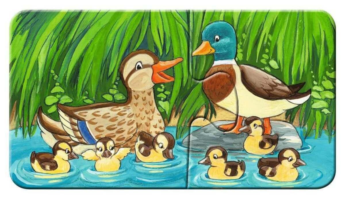 Bild 5 von Ravensburger Tierfamilien auf dem Bauernhof Kinderpuzzle