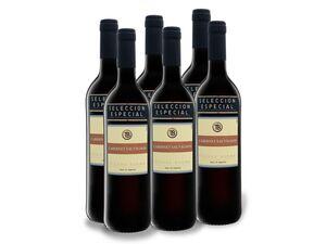 6 x 0,75-l-Flasche Tierra Buena Cabernet Sauvignon trocken, Rotwein