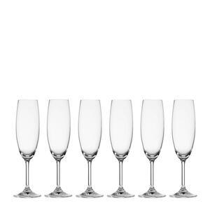 Sektglas-Set 6-teilig