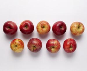 NATUR Lieblinge Äpfel Krumme Dinger