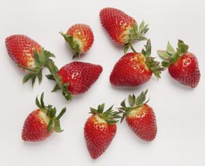 NATUR Lieblinge Erdbeeren