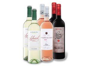 6 x 0,75-l-Flasche Weinpaket Spanien