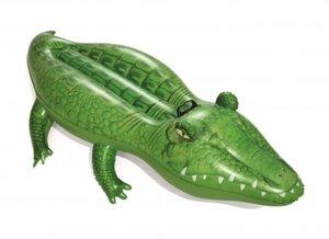 Schwimmtier Krokodil