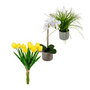 LIVING ART     Naturtreue Pflanze