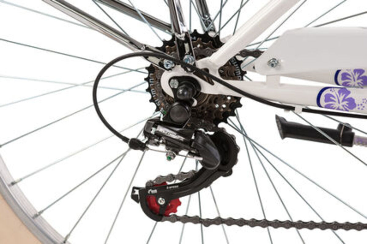 Bild 3 von KS Cycling Cargo-Beachcruiser 6 Gänge Kahuna 26 Zoll