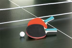 Topfit Tischtennis-Schläger, 2er Set