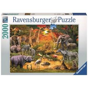 Ravensburger Puzzle: Versammlung am Wasserloch, 2000 Teile