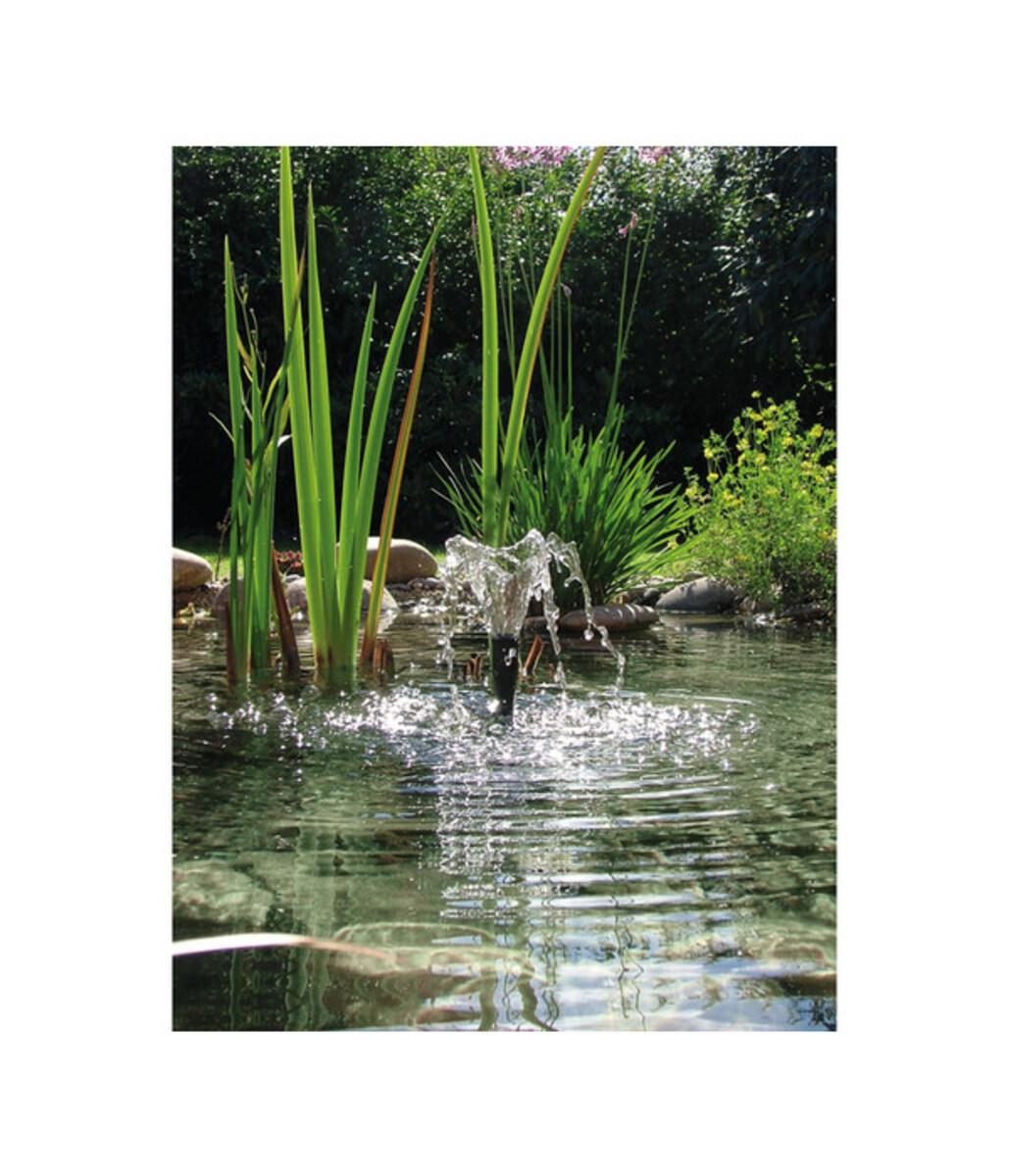 Bild 5 von Oase Aquarius Fountain Set 2500