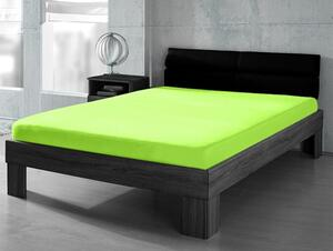 DREAMTEX Premium Jersey Spannbetttuch 90-100x200cm Farbe grün