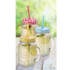 Trinkglas - mit Schraubdeckel und Trinkhalm - ca. 350 ml Inhalt - je