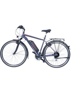"""E-Bike »ETH 1806«, 28 """", 8-Gang, 8.8 Ah"""