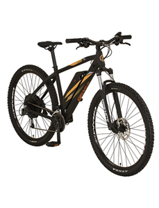 "E-Bike »Graveler«, 29 "", 27-Gang, 10.4 Ah"