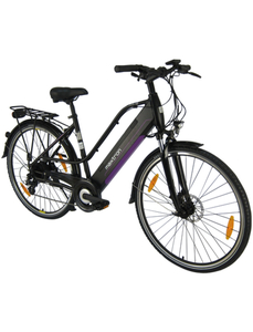 "E-Bike »MT-12«, 28 "", 8-Gang, 11.6 Ah"