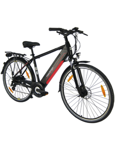 "E-Bike »MT-11«, 28 "", 8-Gang, 11.6 Ah"