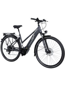"E-Bike »VIATOR 5.0i«, 28 "", 10-Gang, 11.6 Ah"