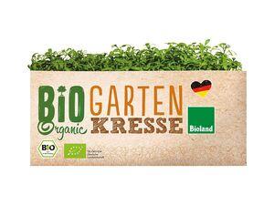 Bio-Kresse