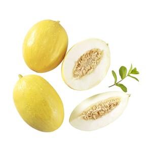 Spanien Honig- oder Galia Melonen, je Stück