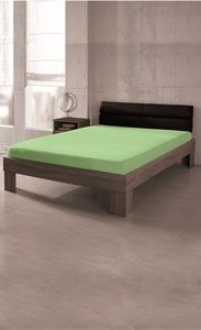 Dreamtex Premium Jersey Spannbetttuch 140-160x200 cm, apfelgrün