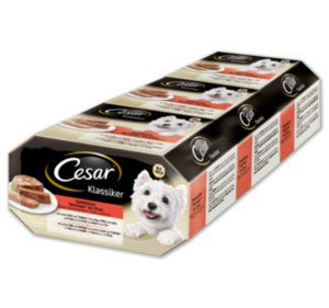 CESAR Selection Multipack