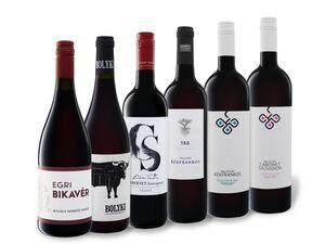 6 x 0,75-l-Flasche Weinpaket Rotwein trocken aus Ungarn