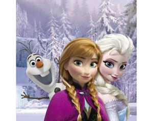 Keilrahmenbild Disney ca. 35x35cm Frozen