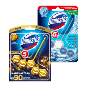 Domestos WC Stein Power 5