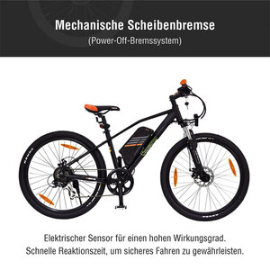 "E-Mountainbike ""R6"""