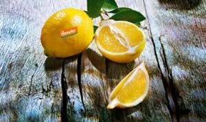 demeter Bio-Zitronen