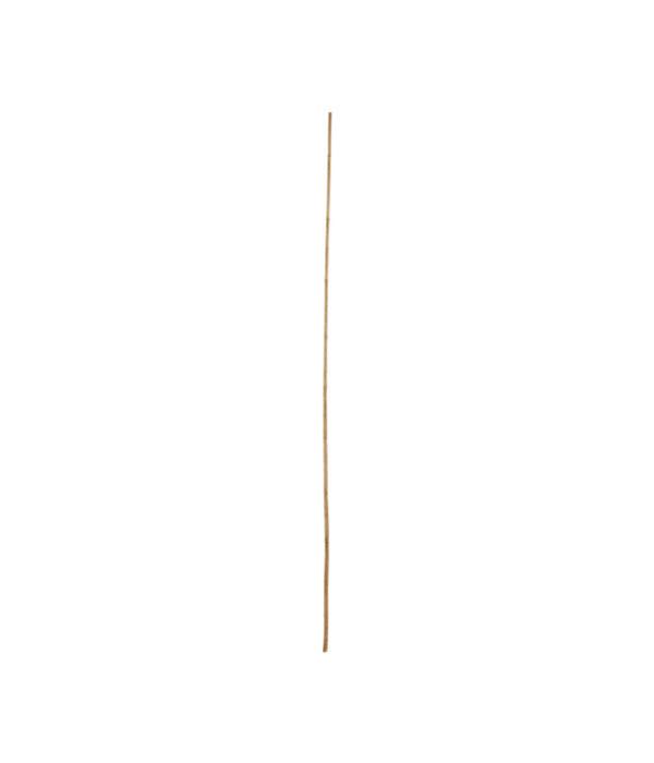 Bambusrohr, natur