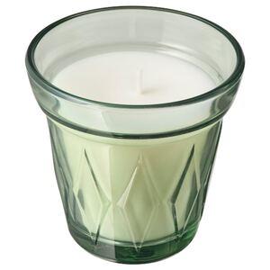 VÄLDOFT Duftkerze im Glas, Morgentau, hellgrün8 cm