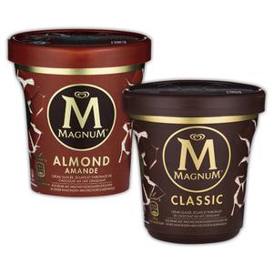Magnum Pint Ice Cream