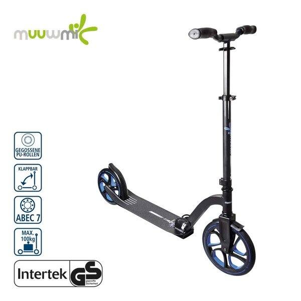Scooter 250 250-mm-Rollen