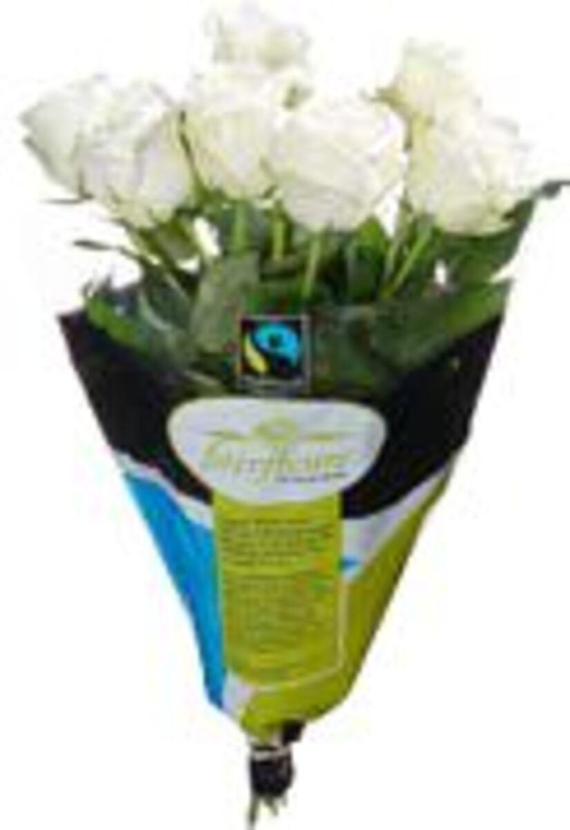 Bild 1 von Fairtrade Rosen
