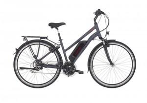 Fischer E-Bike Trekking 28 Zoll 24-Gang Damen, ETD 1806-S1
