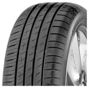 205/55 R16 91V EfficientGrip Performance