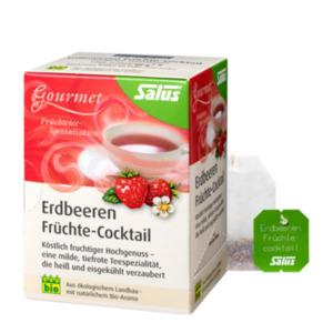 Salus Bio Gourmet Erdbeeren Früchte-Cocktail 15 Filterbeutel