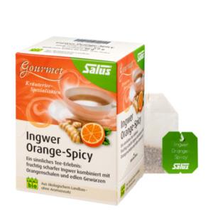 Salus Bio Gourmet Ingwer Orange-Spicy 15 Filterbeutel