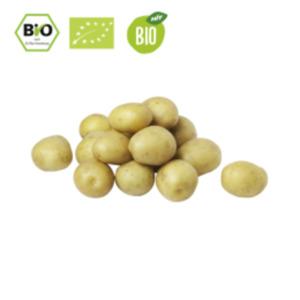 Deutschland/SpanienBio Speisefrühkartoffeln